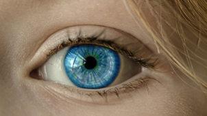 cuáles lentes de contacto